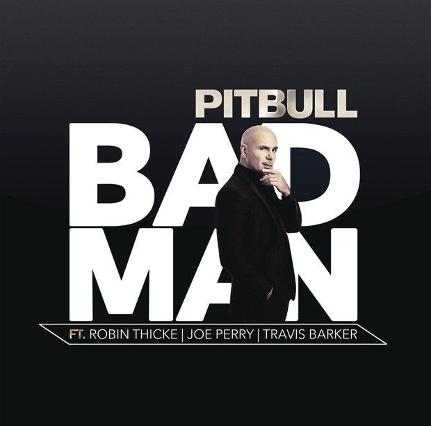 pitbull-bad-man
