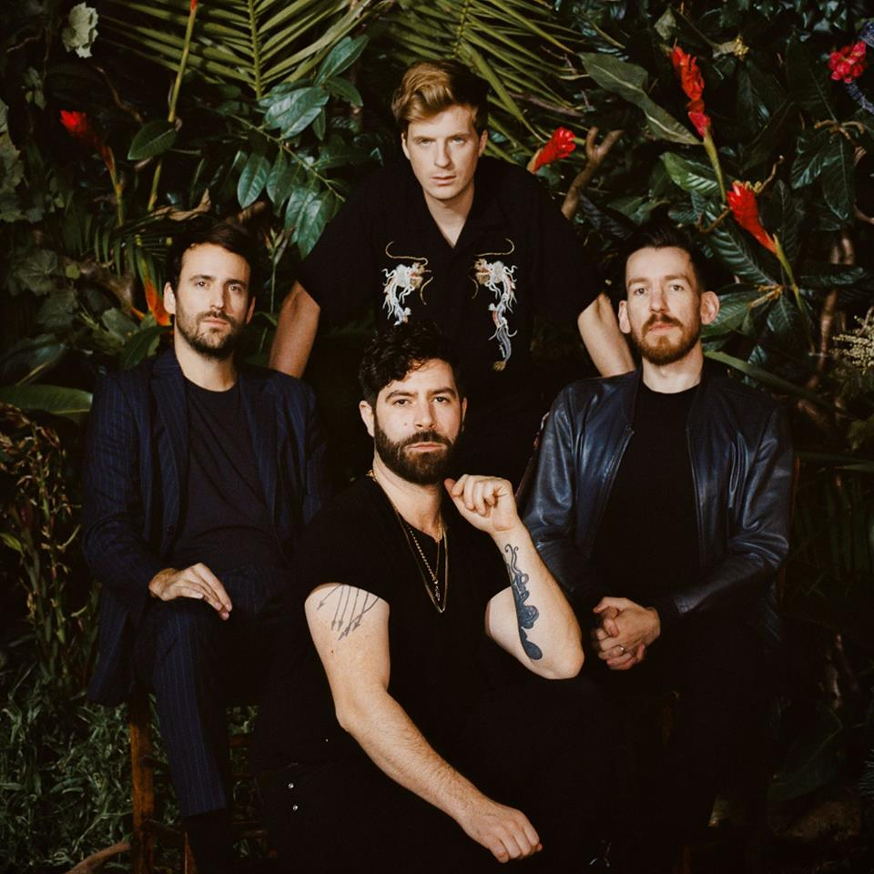 Foals-On-The-Luna